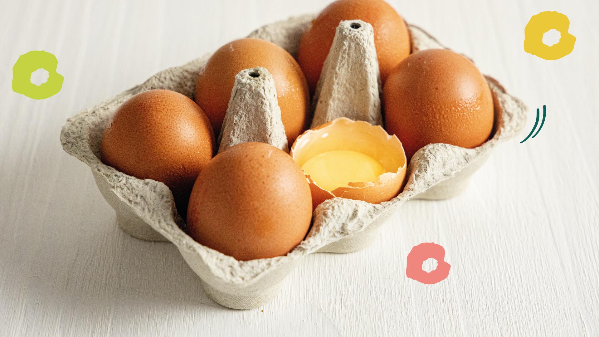 ovos-organicos-raizs