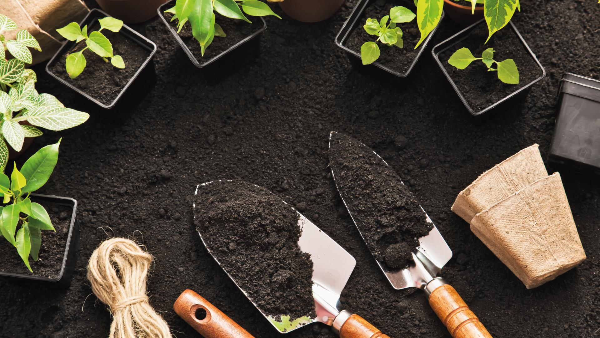 como-fazer-horta-caseira
