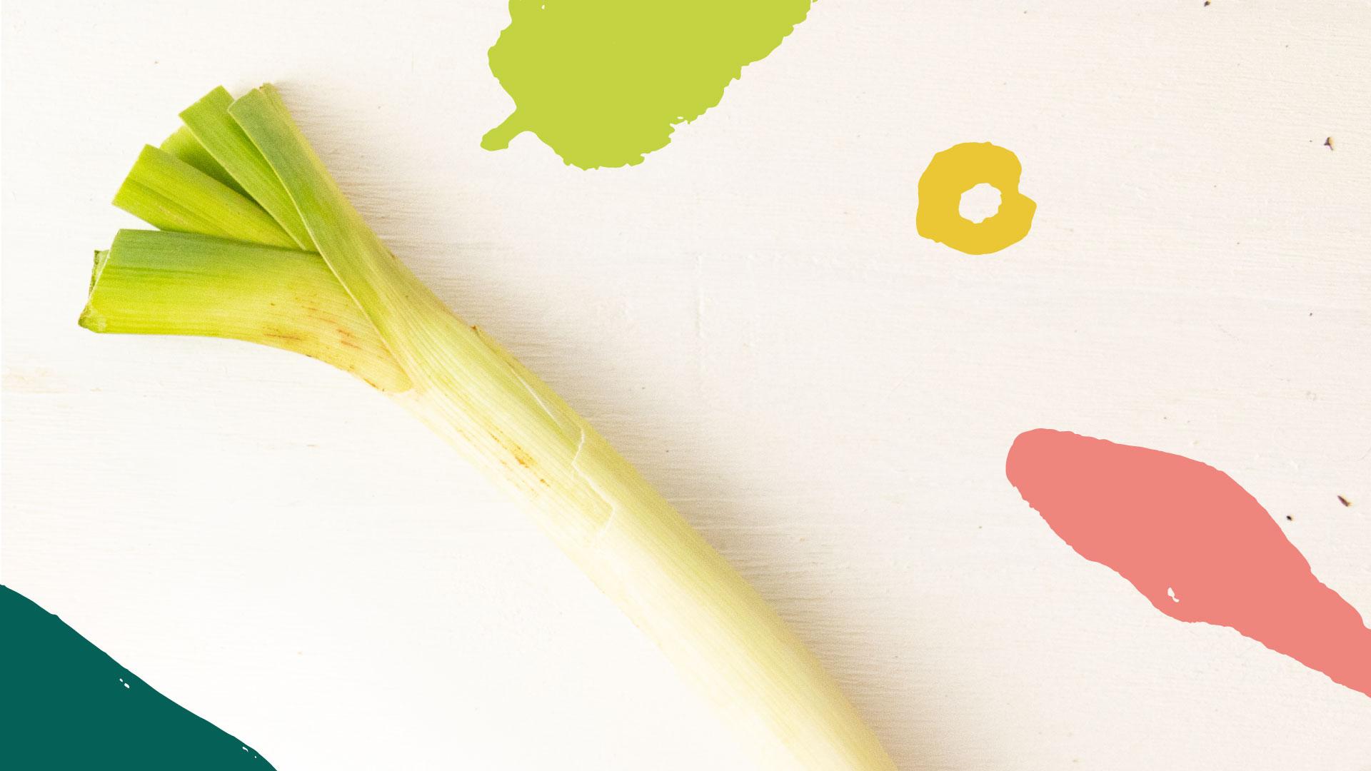 alho-poro-organico-raizs
